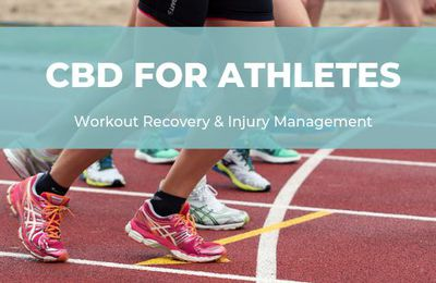 How to Buy CBD for Atheletes Online Legally?