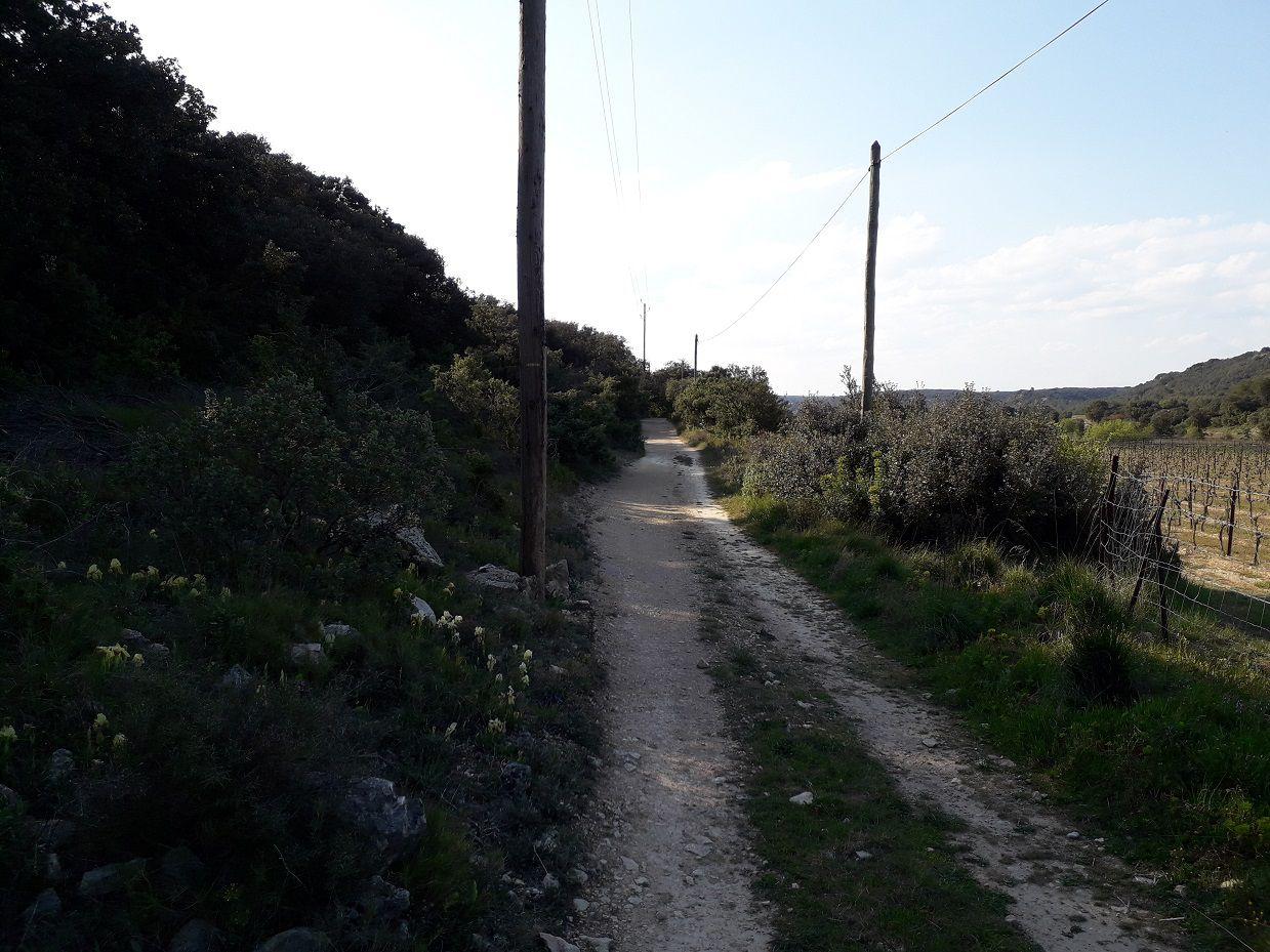 Randonnée à Valliguières (30).
