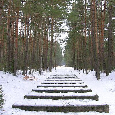 Que s'est il passé un 2 aout ? le 2 aout 1943 la révolte du camp d'extermination de Trelinka