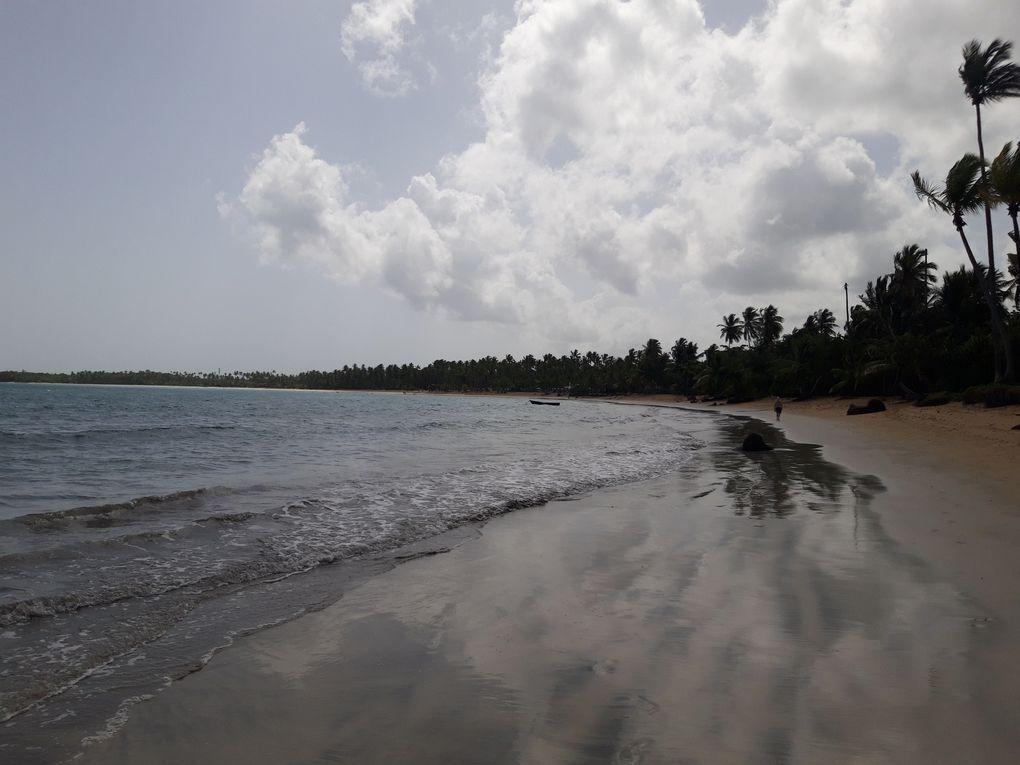 Visite du Viva Wyndham V Samaná sur la magnifique Playa Cosón de Las Terrenas