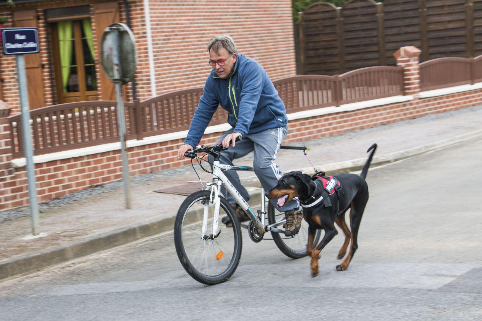 En toutes circonstances, Pixelle doit rester parallèle au vélo...