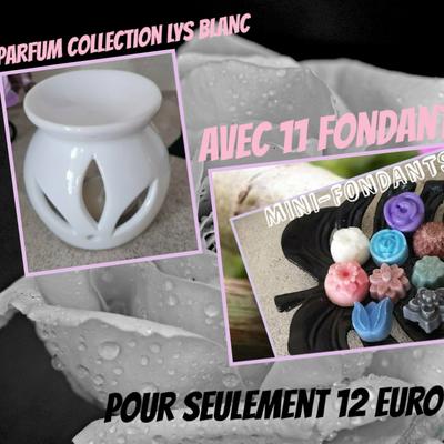 OFFRE!!! Brûle-parfum collection LYS BLANC et 11 fondants