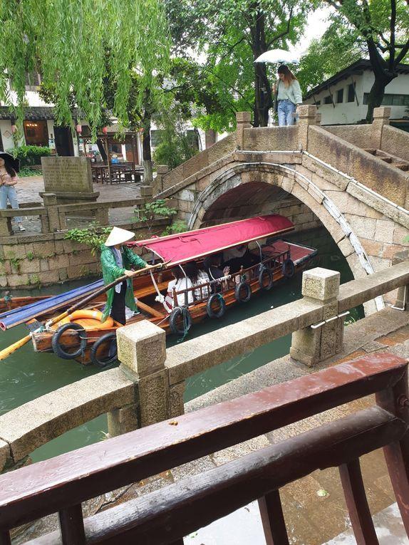 Carnets de Chine 8. Shanghai et Tongli, des jardins extraordinaires