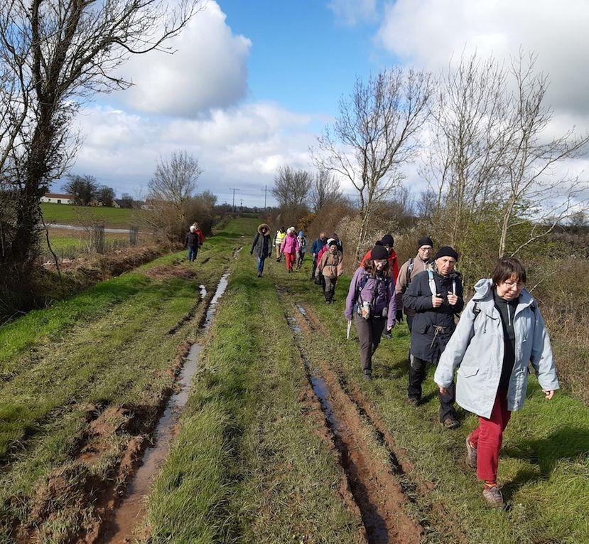 """Groupe des """"10 km"""" à Ligné"""