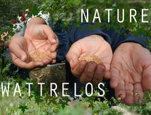NATURE WATTRELOS