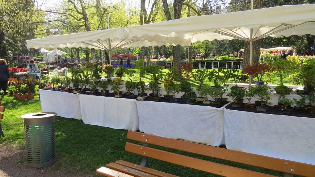 La Fête des plantes...toutes les conditions réunies pour un grand succès