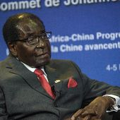 Mugabe donates 300 cows to African Union
