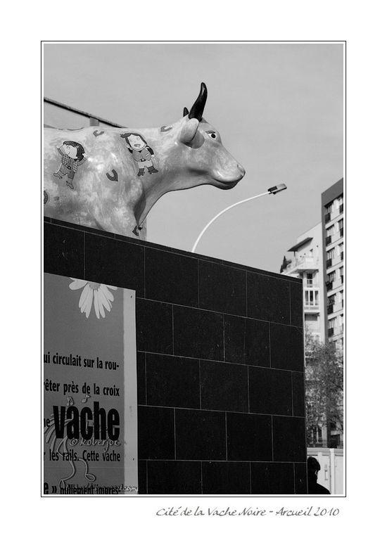 Cité de la vache noire-Arcueil