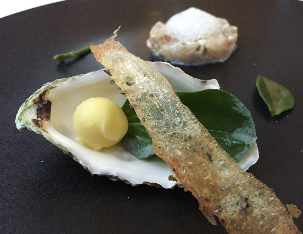 "Tartare huître-daurade, perle d'huître feuille ""iodée"" (mertensie maritime) - Le couteau et la langoustine, sauce wazabi"