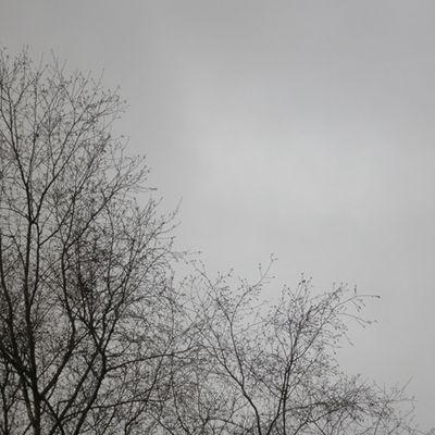 Ciel du lundi 15 avril 2013