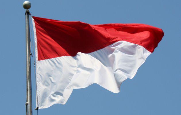 Mengenali Alat Pemersatu Bangsa Indonesia