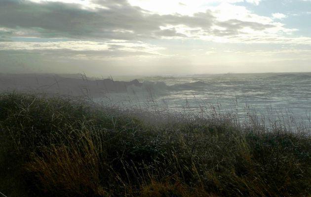 Matin de Brume sur la côte sauvage au Chateau d'Olonne