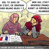 La France et le renouveau de l'islam,