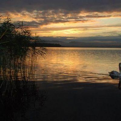 Al confine del lago
