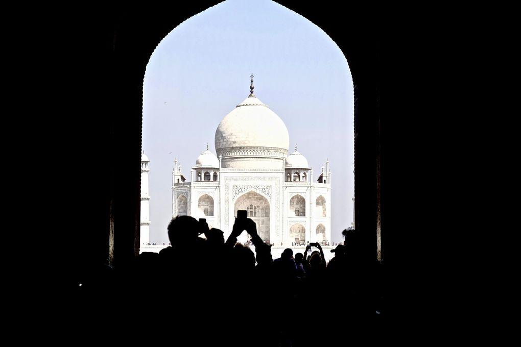 L'émotion face à une des 7 Merveilles de ce monde....Du monde partout certes, mais des points de vue multiples qui laissent le Taj Mahal seul et noble face aux petits êtres que nous sommes.