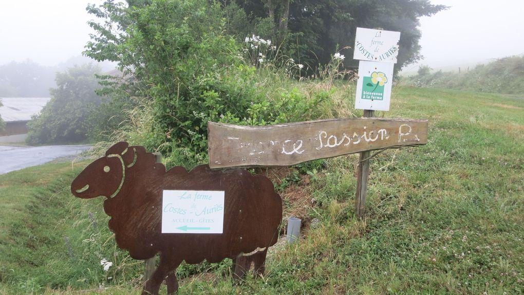 Du Quercy au Haut-Languedoc