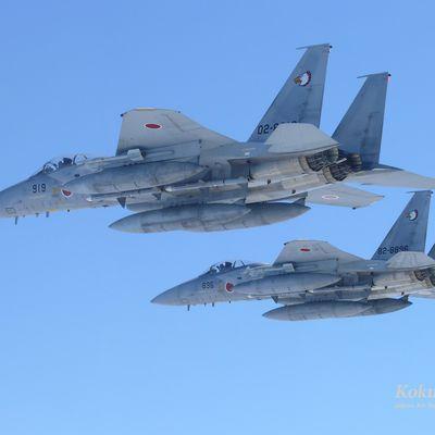 Le Japon va moderniser ses F-15J/DJ
