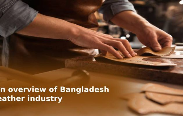An overview of Bangladesh leather industry