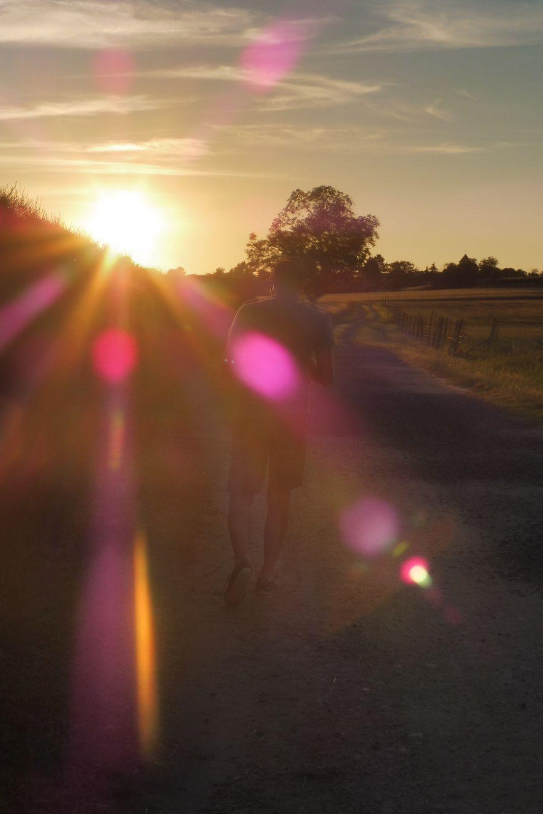 Promenade au crépuscule