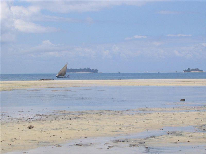 Photos de nos quelques jours passés à Zanzibar en Mars 2005.