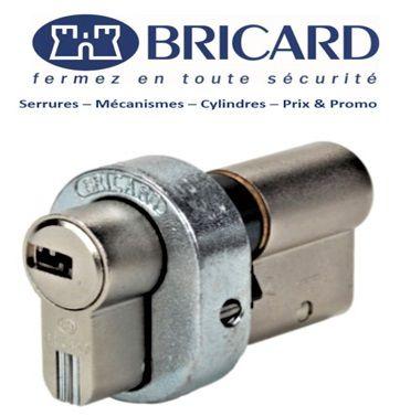 Bricard_Serial_Levallois