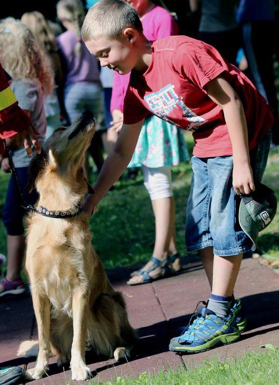 Dass Hunde in der Regel auch sehr lieb sein können, konnten alle selbst erfahren, als die Streicheleinheit anstand. Aber auch hier, so Desiree, gelte es einige Regeln zu beachten. So solle man dazu nicht frontal und auch nicht von hinten, sondern von der Seite auf einen Hund zu gehen. Mit dem nötigen Respekt verteilten dann die Kinder sehr zaghaft ihre Streicheleinheiten an die vier Hunde.