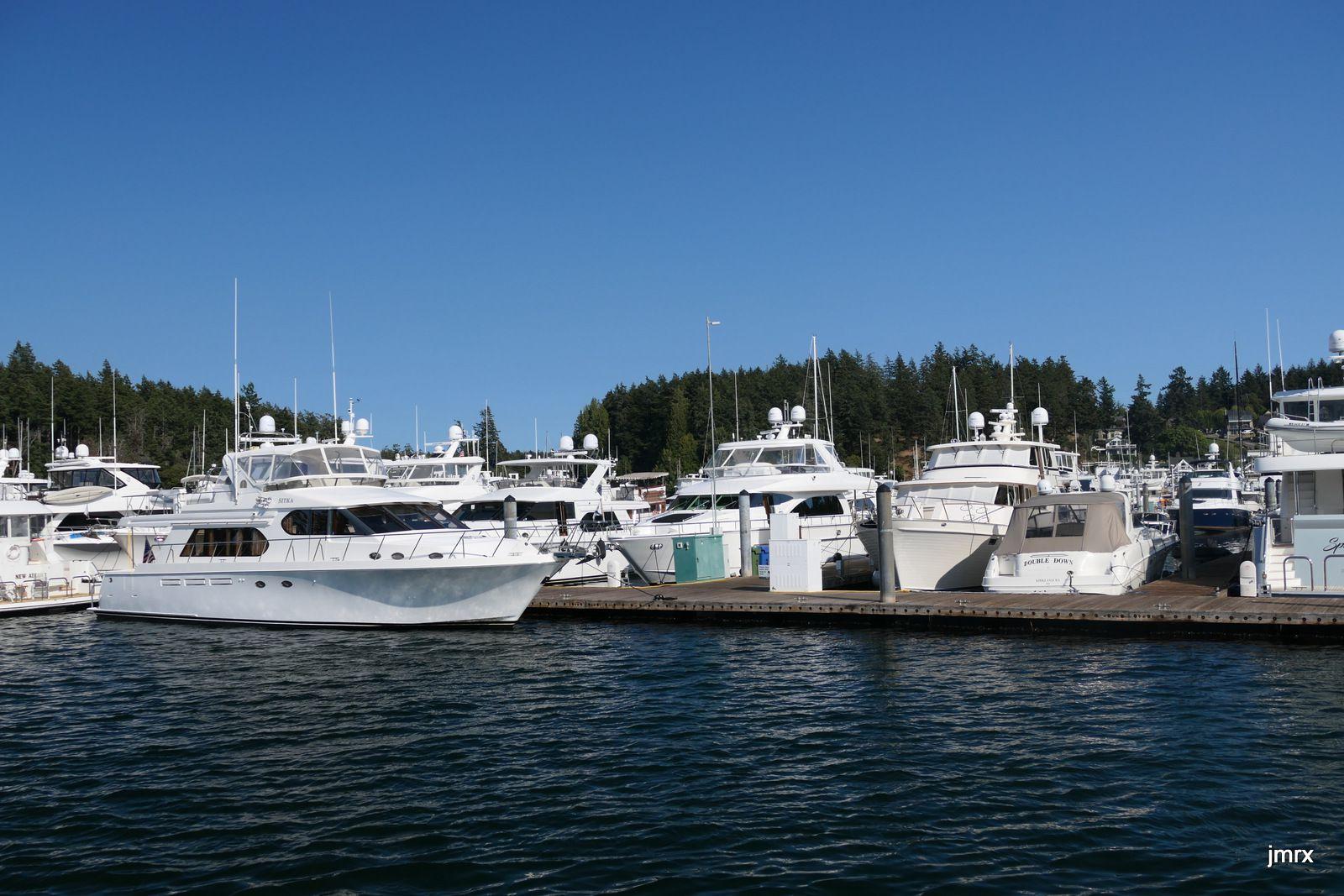 Le mouillage et la Marina de Roche Harbor un jour d'été. Encombré!!
