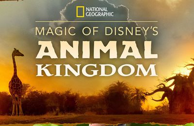 Disney+ : « Au Coeur de Disney's Animal Kingdom », disponible le 25 Septembre