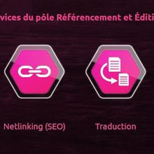 SEO : SEDECO booste votre business via divers services !