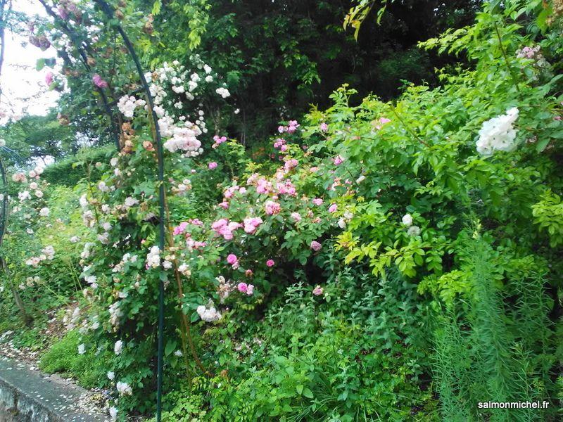 Fourvière - Jardin du Rosaire