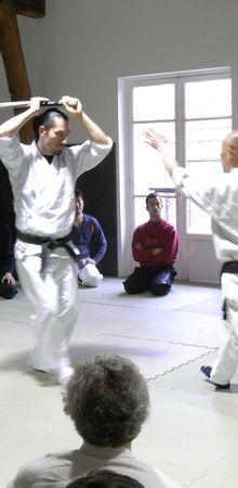 Entretien avec Hino Akira senseï (12): armes et mains nues