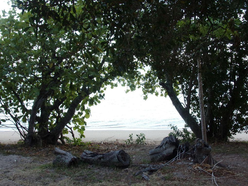 Saga Néo-Calédonienne..... Cap au nord jusqu'à Poingam