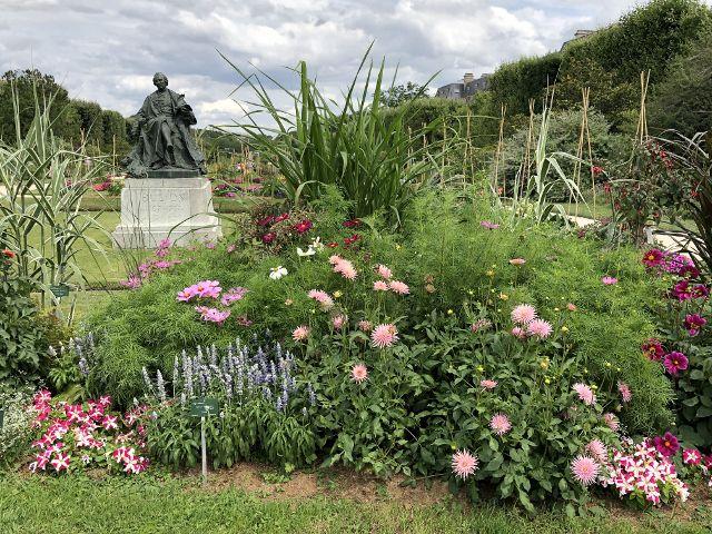 Jardin des plantes , les fleurs 5eme