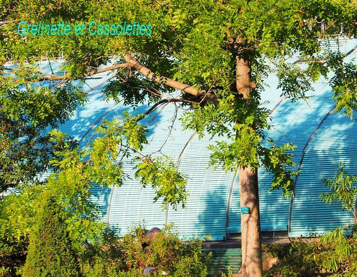 Le Jardin Botanique et les Serres d'Auteuil, deuxième partie