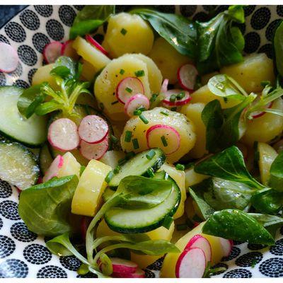 Salade De Pomme De Terre Et Radis