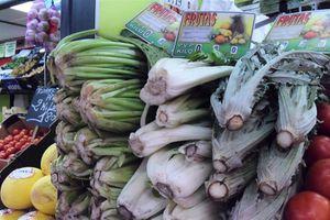 En Espagne, j'ai découvert un légume étonnant : la bourrache