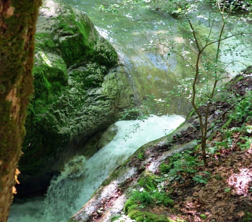 Les Moulins de Curienne