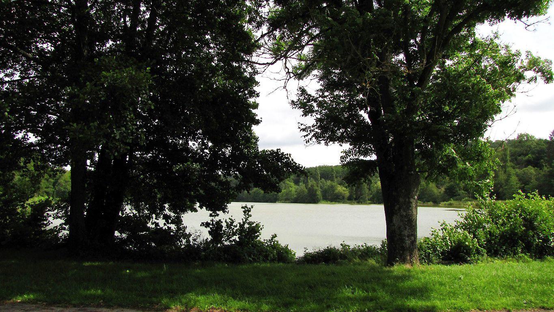 les étangs de Saint-Pierre