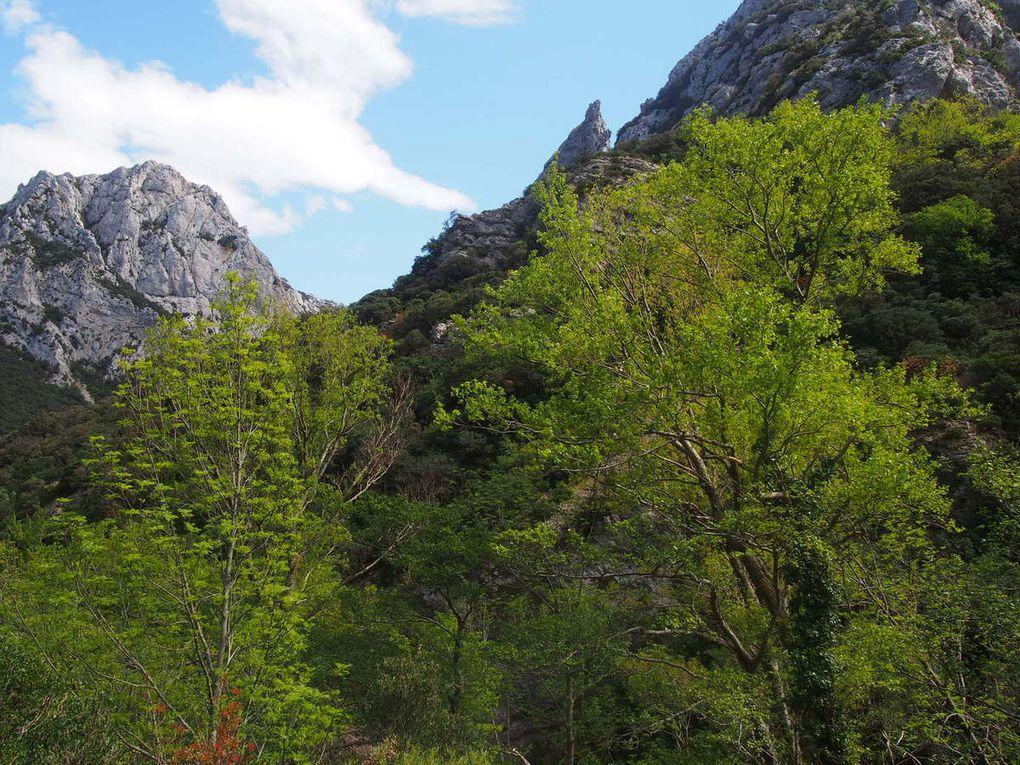 Cathares : Vendredi 5 Mai - Gorges de Galamus