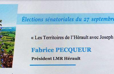 Fabrice Pecqueur, adjoint au maire de Valergues, est candidat aux élections sénatoriales aux côtés de Joseph Francis (UDI)