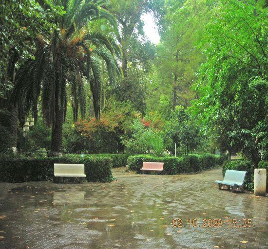 Pas de chance ....Me vici de retour à Miliana....Un déluge J'ai tout de même pris quelques photos. Photoshop ravivera la couleur de la grisaille de ces lieux cet après midi là. Le Pèlerin