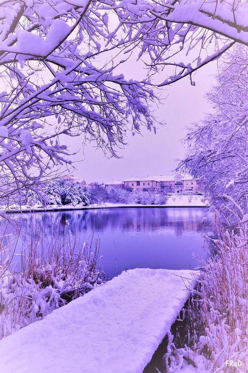"""Snowy Bussy"", jour 2"