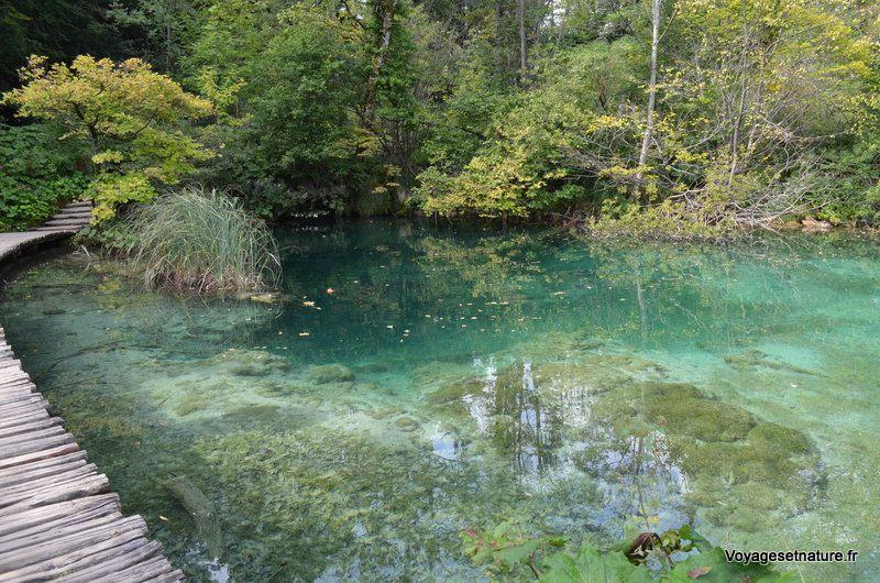 Les lacs du parc national de PLITVICE