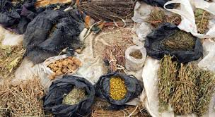 Traditional Healing & Herbalist in Joburg+27784944478