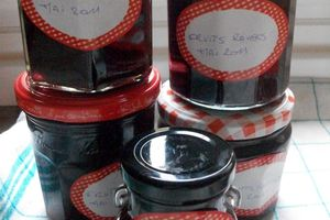 ********** CONFITURE AUX FRUITS ROUGES **********