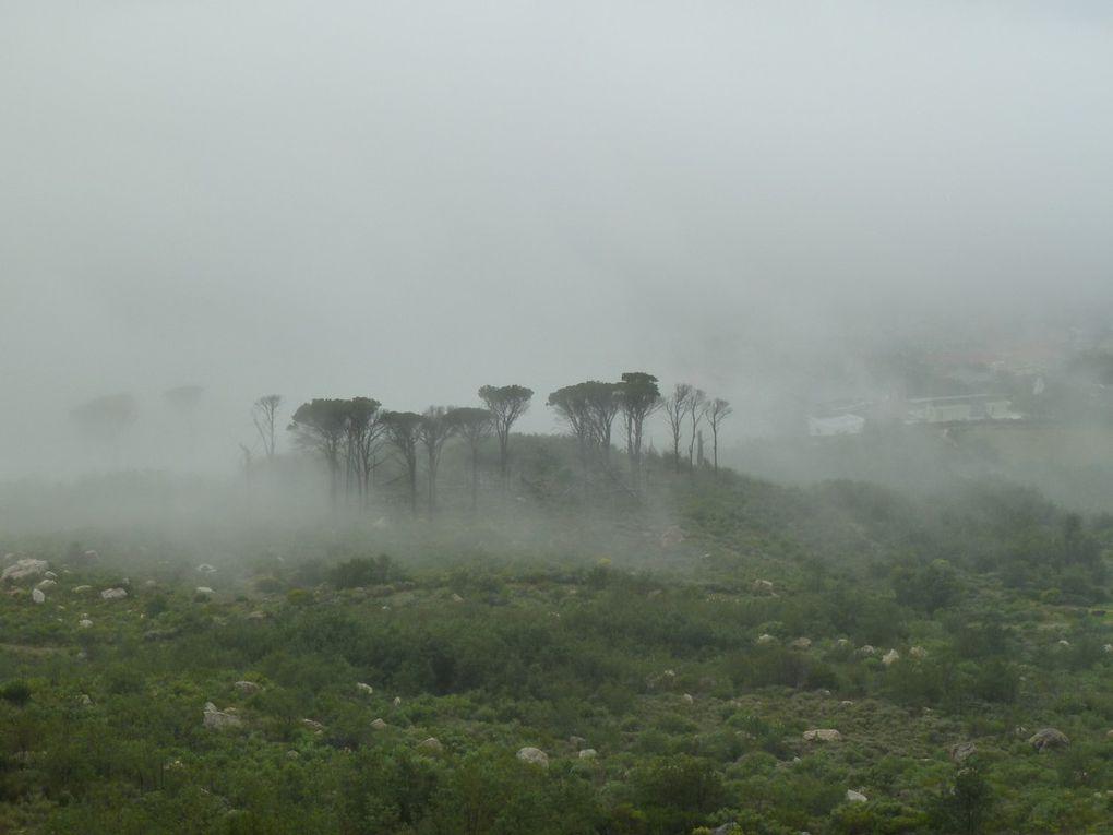J3 - Cape Town