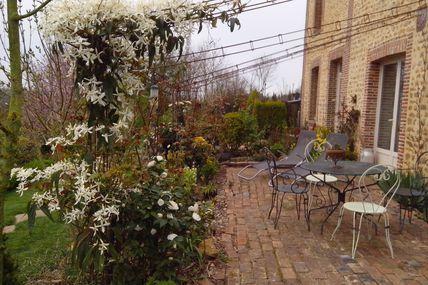 Le printemps  au jardin des violettes