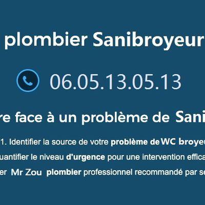 RÉPARATION SANIBROYEUR PARIS - 79€ - 06050905509 Sanibroyeur bouché