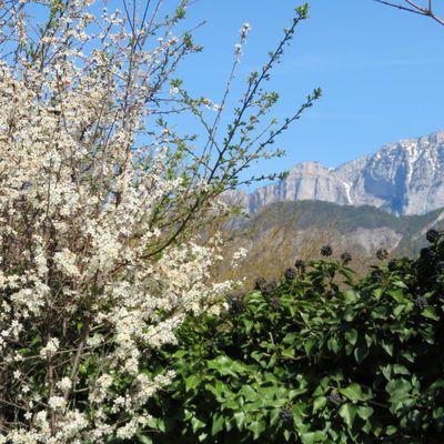 Les jardins du Perrier au printemps (2)/ Balade dans la Drôme