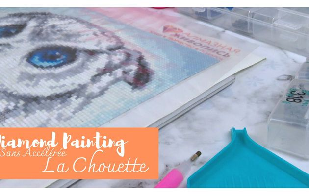 "Diamond Painting, la suite de ""La Chouette"""
